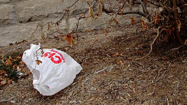 Die schöne Mär vom Bioplastik