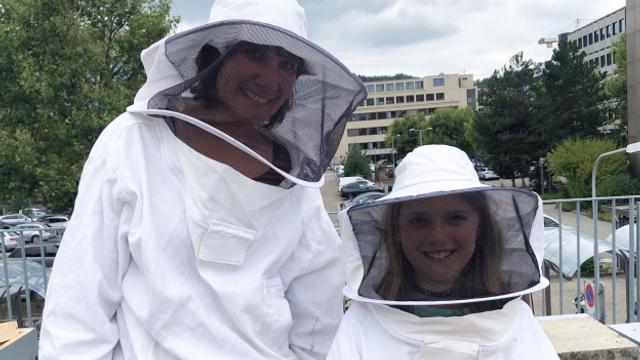 Zambo-Bus: Verregneter Sommer – für Bienen eine Katastrophe
