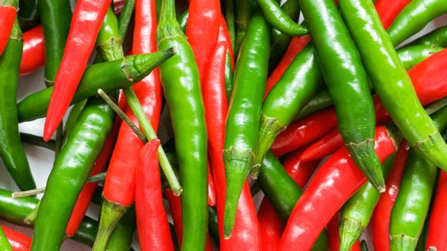 Chilis: Scharfe Früchtchen