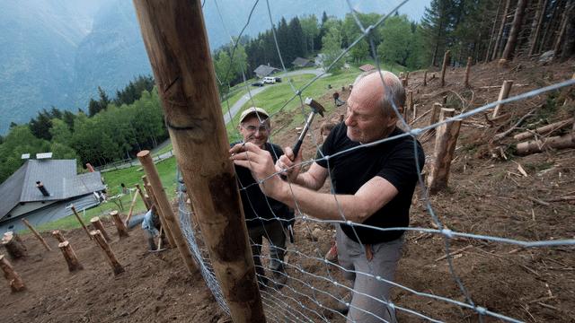 Freiwilligenarbeit: So sind Sie versichert
