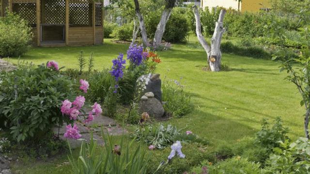 Auf Zeckenjagd im Garten