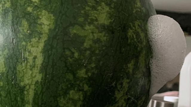 Unheimliches Früchtchen: Wenn die Wassermelone schäumt