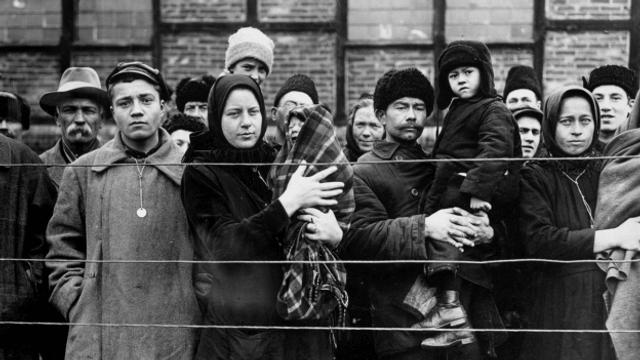 Die Wolgadeutschen zwischen Aufbruch und Vertreibung