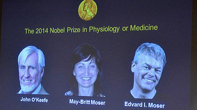 Nobelpreis für Medizin geht an drei Hirnforscher