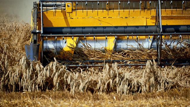 Weltklimarat fordert Veränderung der Landwirtschaft