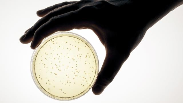 Etwas tun gegen die Antibiotikaresistenz