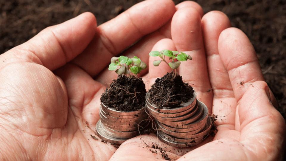 Greenpeace Schweiz testet Banken und ihre «nachhaltigen» Anlagen