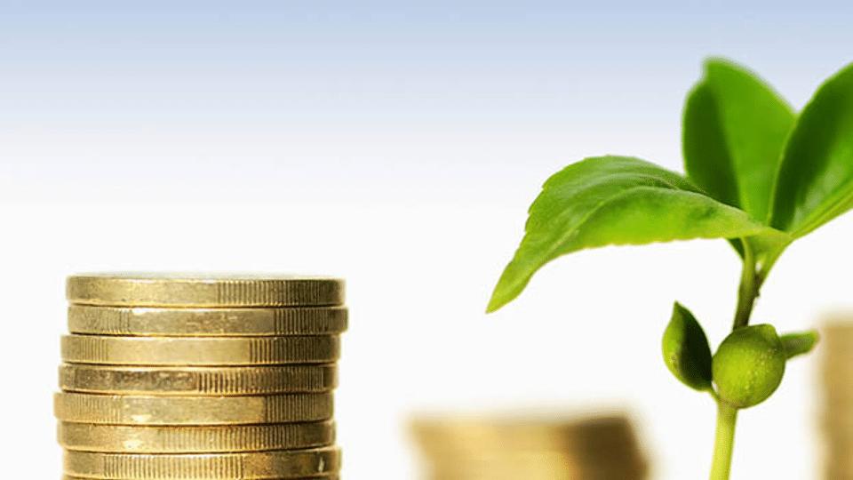Nachhaltig Geld anlegen: Wie geht man richtig vor?