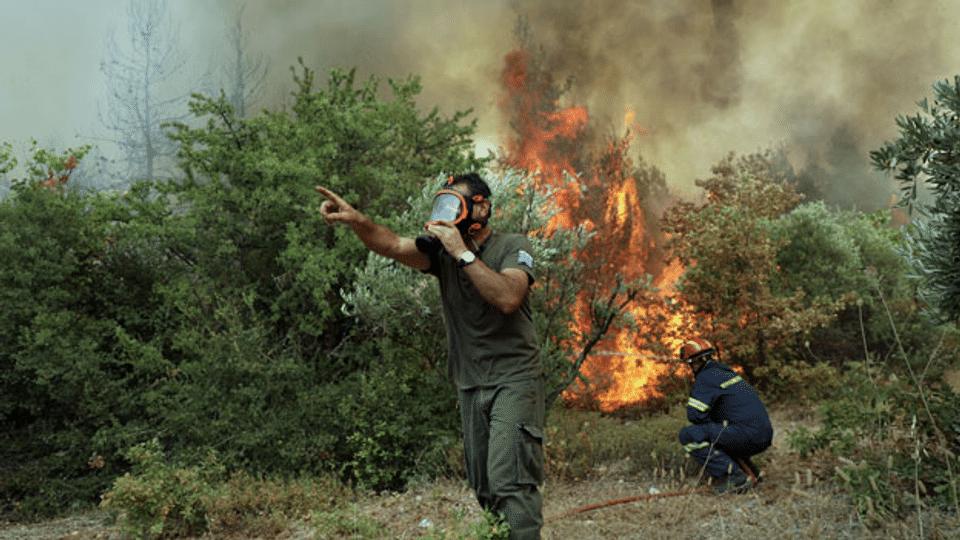 Waldbrände in Griechenland: Der Schock sitzt tief