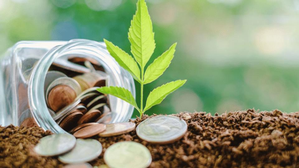 «Green Fintech»: Nachhaltige Finanzwirtschaft